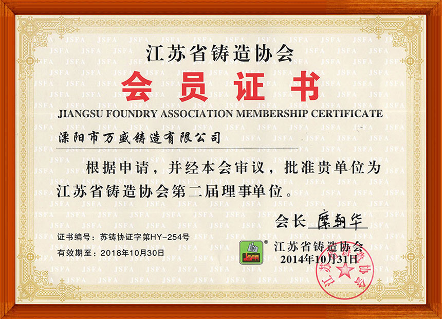 Jiangsu Foundry Association Director